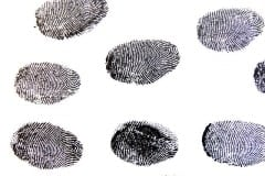 maxpixel_freegreatpicture_com-Fingerprint-Traces-Pattern-Contrasts-Detective-456486.jpg