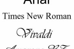 engraving fonts - all pieces are engraved in Ariel font as standard, please let us know if you prefer one of the others in the comments